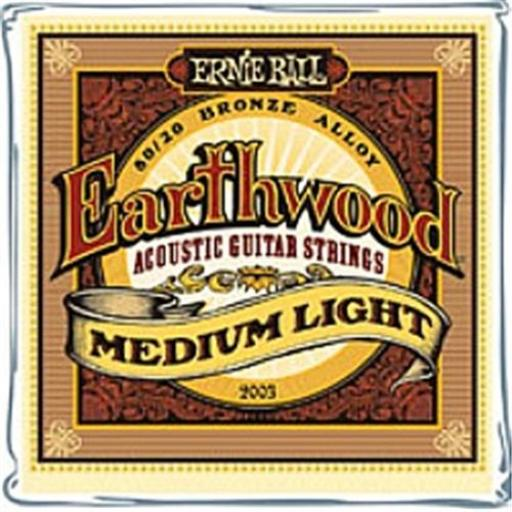 Earthwood Medium Light 80/20 Acoustic Guitar Strings 12-54